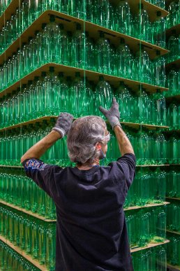 Commercial photo of production facility worker stacking green 2 liter bottles at Origlio Beverage in Philadelphia, PA.