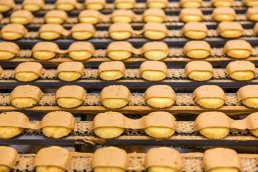 Peanut Butter Kandy Kakes photographed on food production line at the Tastykake plant in Philadelphia, PA.